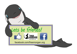 help-morgan-facebook