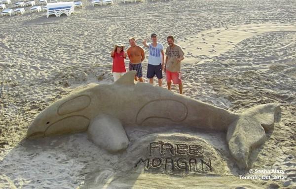 help-morgan-sand