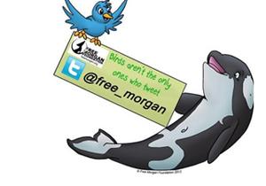 help-morgan-twitter