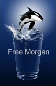 Free Morgan campaign logo, circa 2010