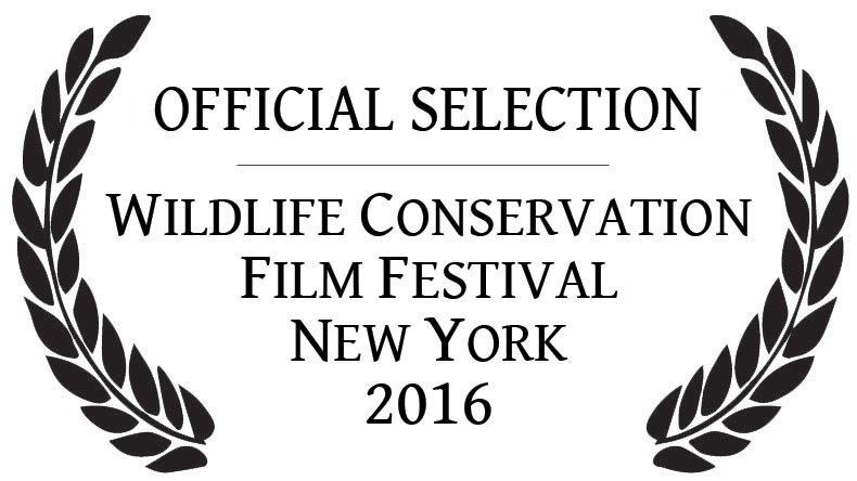 Film Festival Official Selection laurels