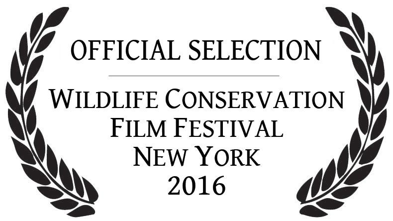 Film Festival Official Selection laurels