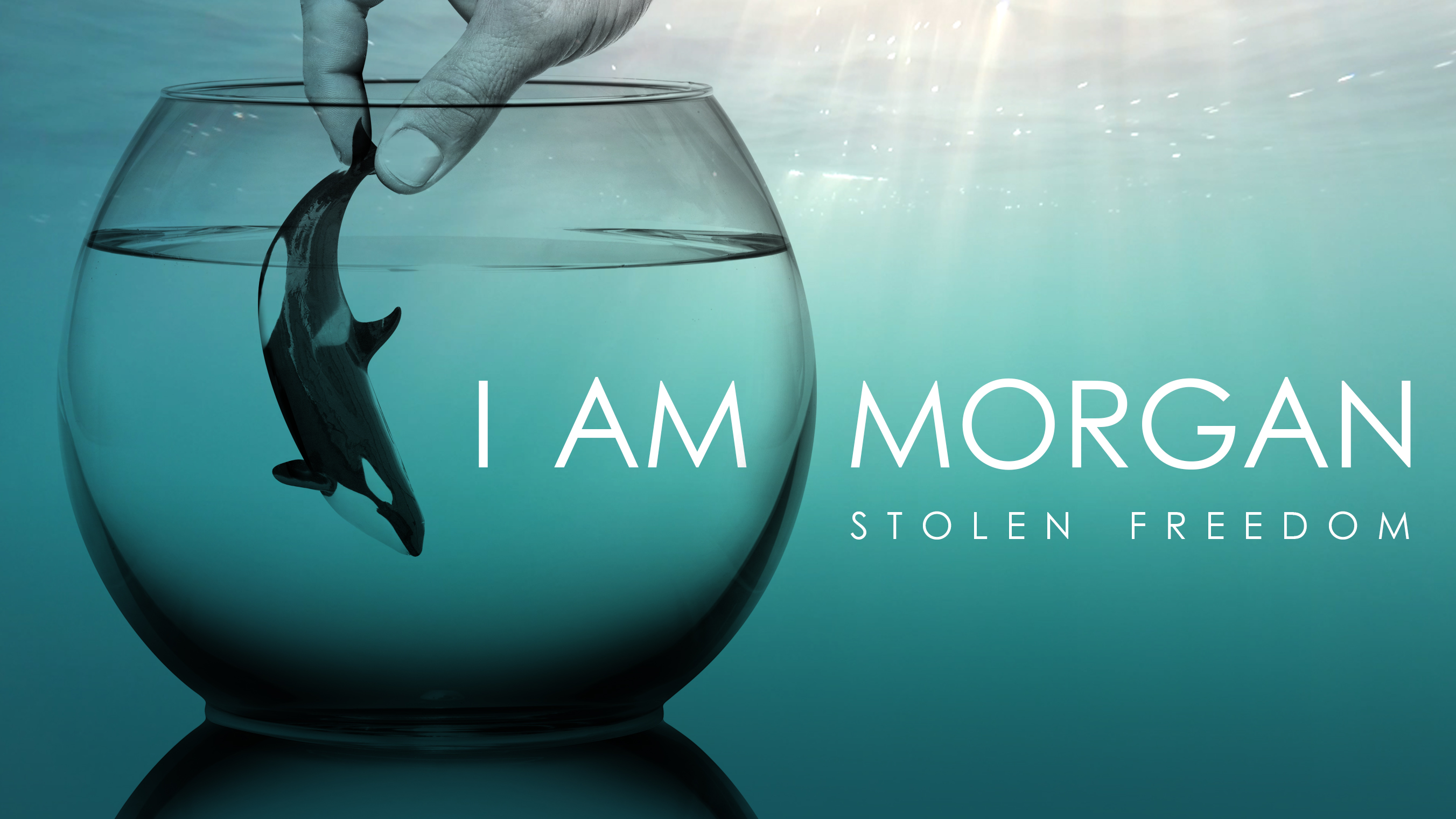 I AM MORGAN - STOLEN FREEDOM - a 4 minute video