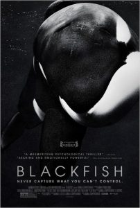 BLACKFISH starred the orca Tilikum, who, according to SeaWorld, contracted a drug-resistant bacteria in 2016.