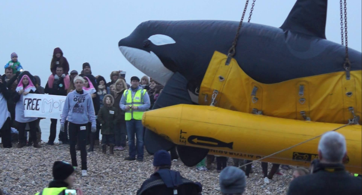 2014-WhaleFest 'Release Mock Morgan' in rescue pontoons