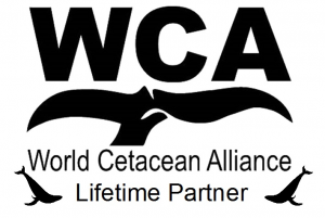 WCA lifetime-partner-logo