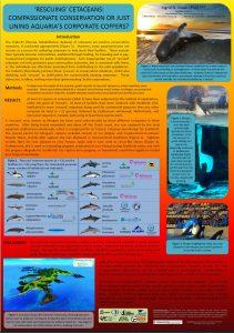 visser-2015-rescued-cetaceans-poster-thumbnail